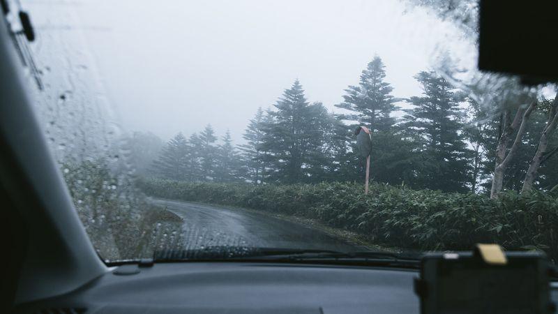 注意が必要な夜間と雨の日の運転の対処法